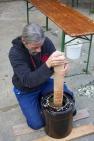 """Ferenc beim Einstampfen unseres Sauerkraut-Experiments, wir nennen es die """"Deluxe-Variante"""" ;) Hier sind zusätzlich geriebene Äpfel und Karotten mit drin."""