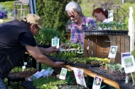 Pflanzenmarkt in Ollersdorf, 25.04.2015 - Danke an unsere lieben Helferleins! :)