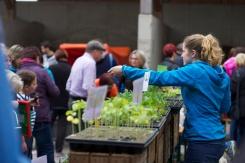 Pflanzenmarkt in Riedlingsdorf, 01.05.2015 - Danke an unsere lieben Helferleins! :)
