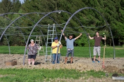 Aufbau des Folientunnels - Danke an unsere lieben Helferleins! :)