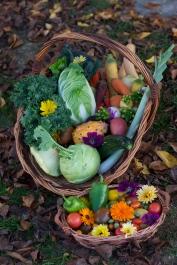 Erntekorb Herbst