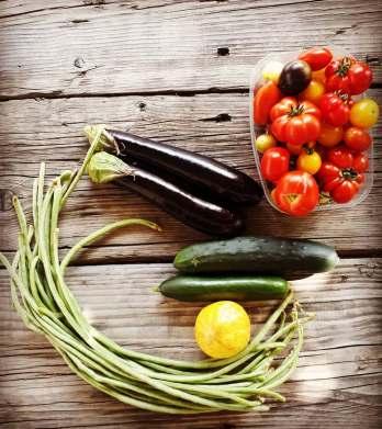 Bio Gemüse vom Sepplashof